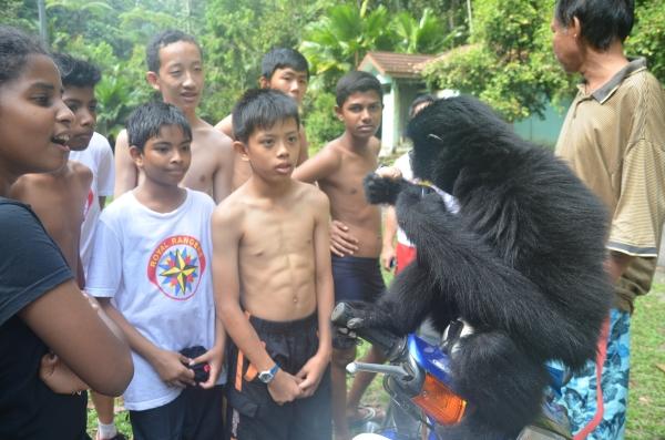 19 a black gibbon giving a lesson